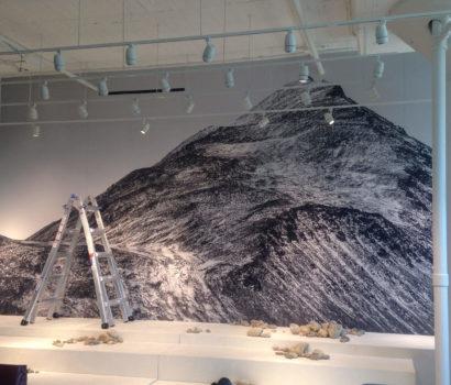 Mural Gallery